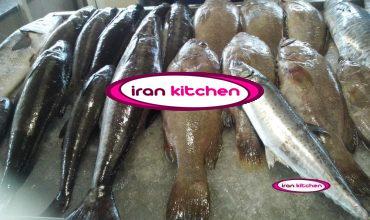 راه اندازی فروشگاه مرغ و ماهی در سراسر کشور